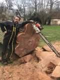 Abattage manuel d'arbres dangereux